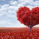 Dragostea în cuplu